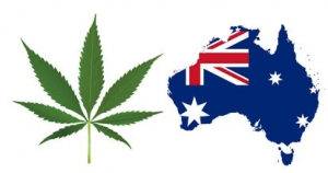 australia cannabis news