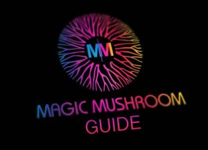 A guide to hunting gold top magic mushies