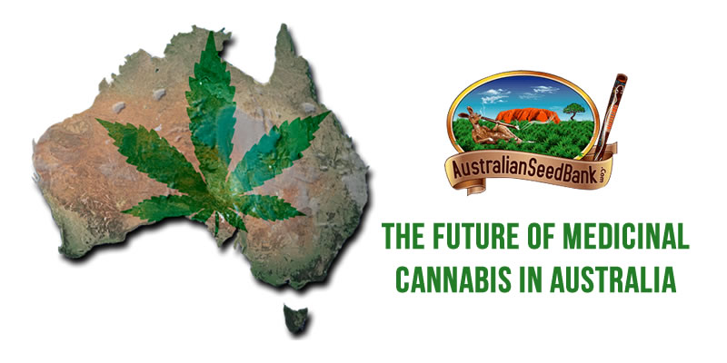 The Future of Medicinal Cannabis In Australia