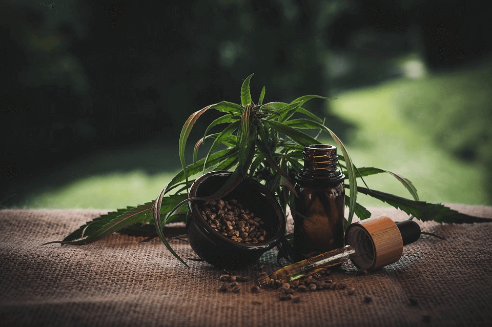 Difference Between Hemp Seed Oil and CBD Oil