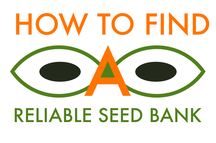 How to choose a reliable seed bank