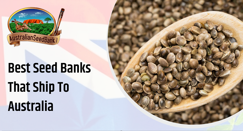 Best Seed Banks That Ship to Australia